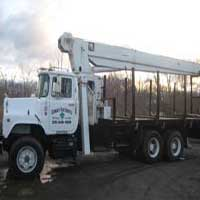George's Tree service owns several cranes and can do work on very tall trees that should only be done by a professional.