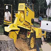 George's Tree service can grind those tough stumps to remove them for you with ease.